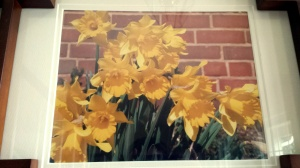 These daffodils are a photo of a photo.  I took the original while in NC.  It is framed and hanging in my mom's foyer, bringing sunshine in no matter the time of year.